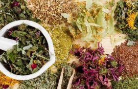 Народное лечение псориаза травами в домашних условиях